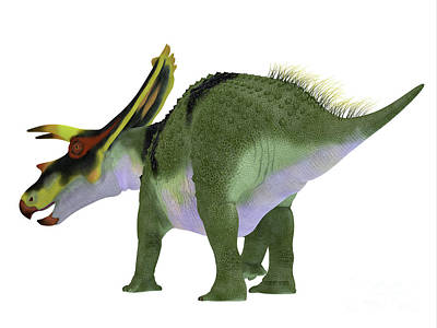 Paul Mccartney - Anchiceratops Dinosaur Tail by Corey Ford