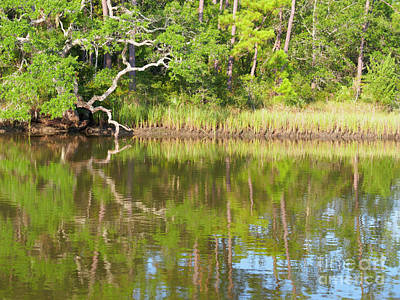 Photograph - Anchorage In Tom Point Creek Charleston County South Carolina by Louise Heusinkveld
