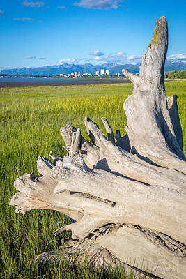 Photograph - Anchorage Summer by Tim Newton
