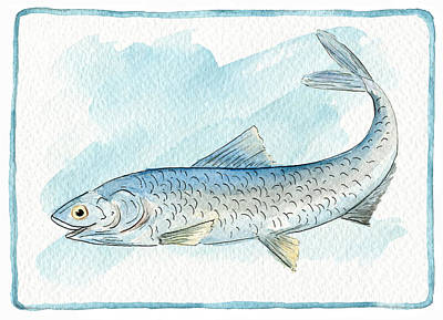 Direct From The Artist Painting - Anchovy by Ruth Gonzalez