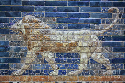 Ceramic Relief Photograph - Ancient Babylon Lion by Patricia Hofmeester