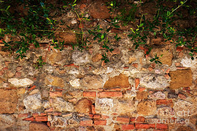 Stone Photograph - Ancient Brick, Stone Wall With Ivy. Vintage, Grunge Background by Michal Bednarek