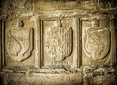 Photograph - Ancient Carvings by Nick Bywater