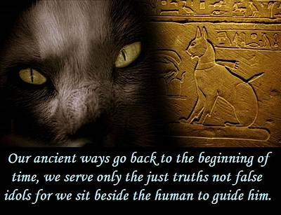 Digital Art - Ancient Cat by John Lyes