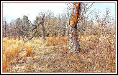 Dead Tree Trunk Digital Art - Ancient Dead Tree Trunk In Late Autumn by A Gurmankin