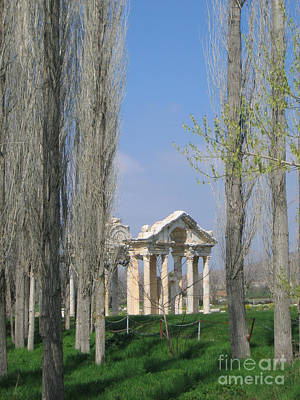 Aphrodisias Photograph - Ancient Gate Through The Trees by Clay Cofer