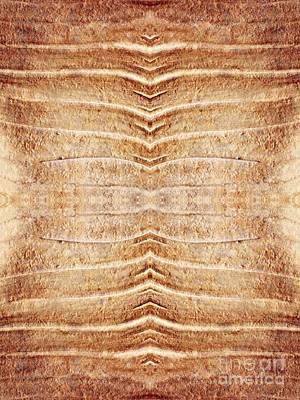 Museum Of Art Digital Art - Ancient Lines 5 by Sarah Loft