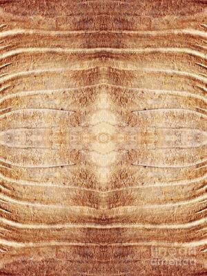 Limestone Digital Art - Ancient Lines 7 by Sarah Loft