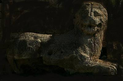 Photograph - Ancient Lion - Nocisia  by Jim Vance