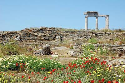 Ancient Marble Ruins And Wild Flowers Original