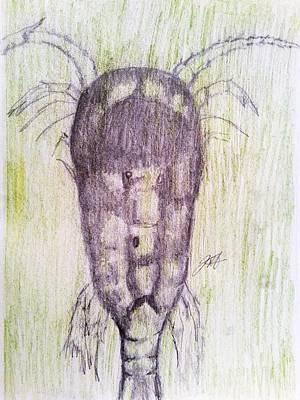 Jenna Thomas Wall Art - Drawing - Ancient One by Jenna Thomas