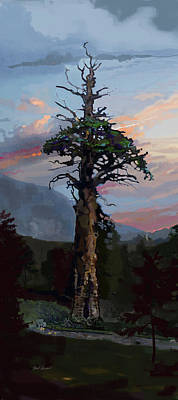 Cedars Painting - Ancient Pine by Brad Burns
