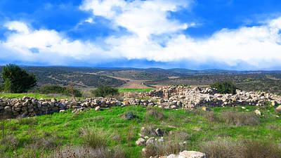Photograph - Ancient Ruins In Israel by Nika Lerman