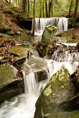 Photograph - Ancient Stream by Douglas Barnett