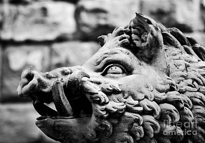 Photograph - Ancient Style Sculpture Of Wild Boar In Florence, Italy by Michal Bednarek