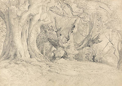 Landscape Drawing - Ancient Trees, Lullingstone Park by Samuel Palmer