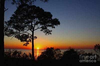 Photograph - Anclote Gulf Sunset by Barbara Bowen