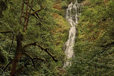 Photograph - And Another Oregon Waterfall  by Hany J