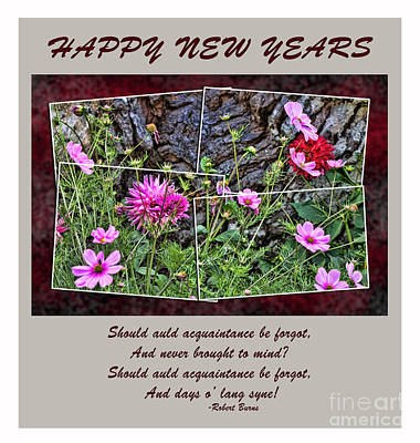 Photograph - And Days O Lang Syne II by Jim Fitzpatrick
