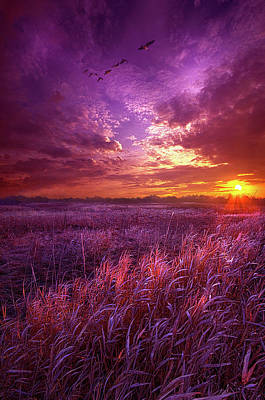 Photograph - And I Dreamt Of Waking by Phil Koch