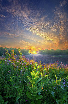 Photograph - And The Hours Go By Like Minutes by Phil Koch