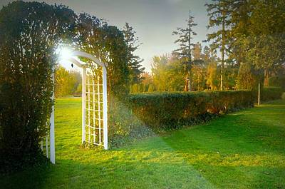 Photograph - And The Trellis by Diana Angstadt