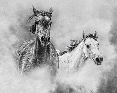 Gray Horses Photograph - And The Winner Is by Ron  McGinnis