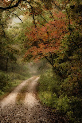 Photograph - ...and Through The Woods by Deb Buchanan