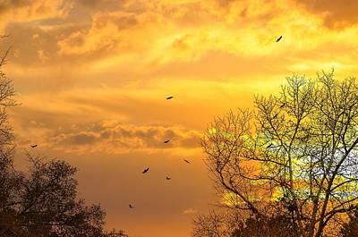Photograph - And Watching The Sun Fall by Jan Amiss Photography