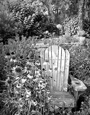 Photograph - Black And White Garden Of Paradise by Aimee L Maher Photography and Art Visit ALMGallerydotcom