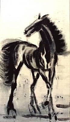Textured Horse Art Drawing - Andalusian Colt by Jarmo Korhonen aka Jarko