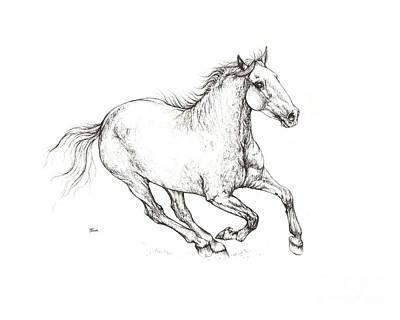 Andalusian Horse Drawing - Andalusian Horse Drawing 2016 09 03 by Angel Tarantella