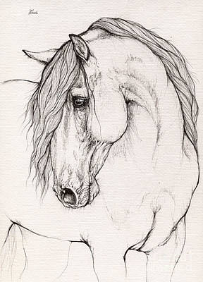 Horses Drawing - Andalusian Horse Portrait 2015 12 08 by Angel Tarantella