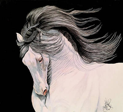 Drawing - Andalusian In Color Pencil by Cheryl Poland