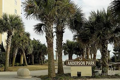 Photograph - Anderson Park Myrtle Beach South Carolina Usa by Bob Pardue