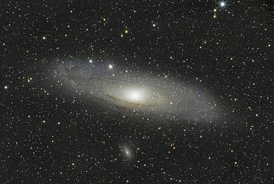 Photograph - Andromeda Galaxy by David Watkins