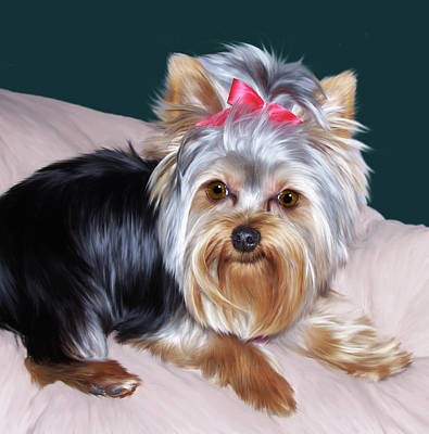 Yorkie Digital Art - Andromeda by Julie L Hoddinott