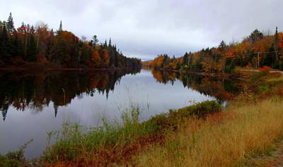 Androscoggin River Photograph - Androscoggin, 13 Mile Woods by Susan Lafleur