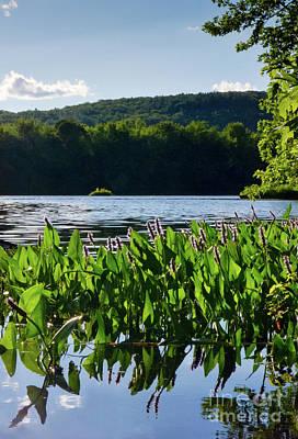 Photograph - Androscoggin River, Rumford, Maine #60648 by John Bald