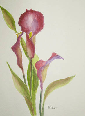 Andy's Calla Lillies Art Print by Marsha Elliott