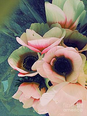 Digital Art - Anemone Dreams by Nancy Kane Chapman