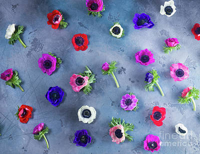 Photograph - Anemones Pattern by Anastasy Yarmolovich