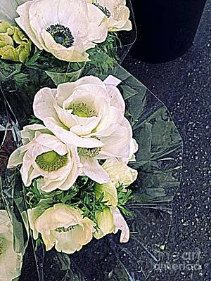 Digital Art - Anemones To Go by Nancy Kane Chapman