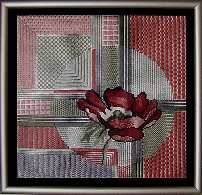 Anemonie Art Print by Shirley Heyn