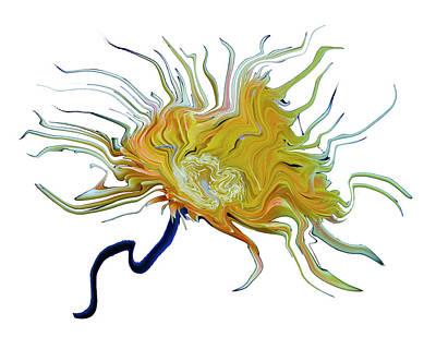 Digital Art - Sea Anemone Flower by Robert Woodward