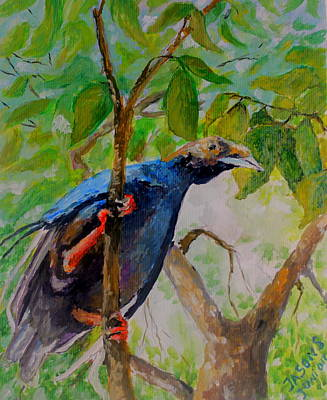 Mangrove Forest Painting - Angel Bird Of Moluccas by Jason Sentuf