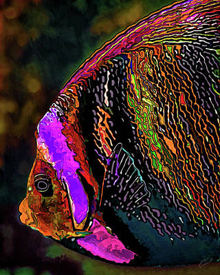Angelfish Wall Art - Digital Art - Angel Face 2 by ABeautifulSky Photography by Bill Caldwell