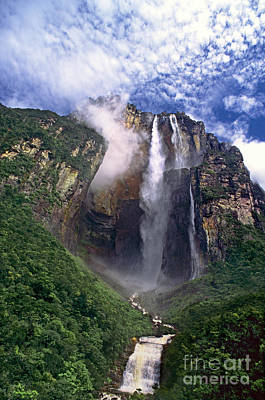 Photograph - Angel Falls And Ayuan Tepui Canaima National Park Venezuela by Dave Welling
