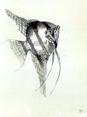 Angelfish Painting - Angel Fish.  by Mike Lester