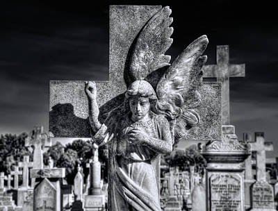 Photograph - Angel In The Morning by Wayne Sherriff